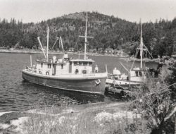 Columbia III with the M.V. John Antle at Cortes Island